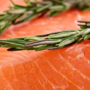 salmone crudo