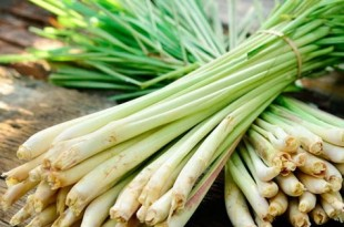 ingredienti alternativi lemongrass