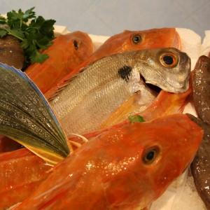 capire pesce davvero fresco