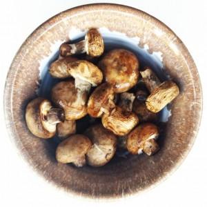 Funghi tecniche di cottura