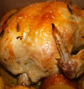 pollo forno