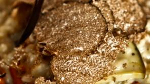 risotto tartufo nero