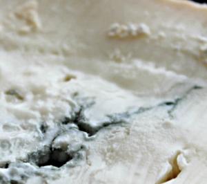 gorgonzola peperoncino