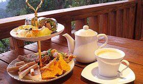 Il delizioso e elegante tè cinese