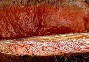 carne orso